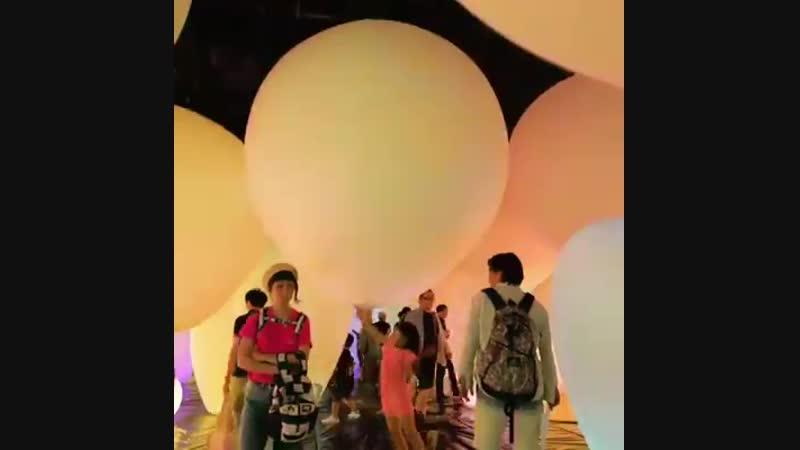 музей цифрового мистецтва в Токіо ( Японія)
