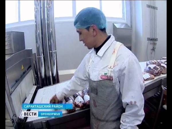 Мясоперерабатывающий завод в Саракташском районе готов принимать до 300 голов КРС в день