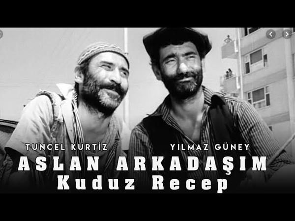 Aslan Arkadaşım Kuduz Recep 1970 Türk Filmi (Yılmaz Güney Tuncel Kurtiz)