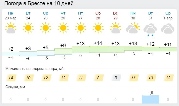 Тепло будет, но не сразу. Все о погоде в Бресте на неделе