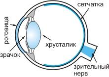 Язвенный кератит, изображение №1