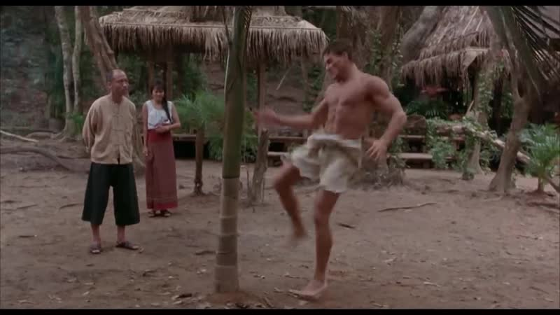 Курт Слоун ломает дерево ногой. Кикбоксер 1989
