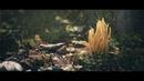 RECLAMATION - UE4 Realtime Cinematic