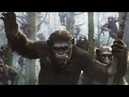 The Onion Reviews Dawn of the Planet of the Apes