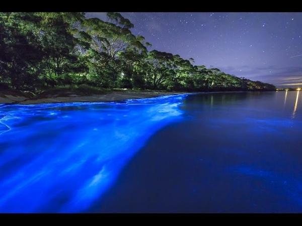 Светящийся пляж на на Мальдивских островах