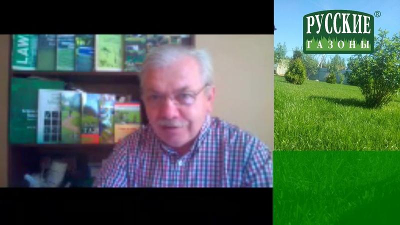 Ответы на вопросы об уходе за газоном. Часть II.
