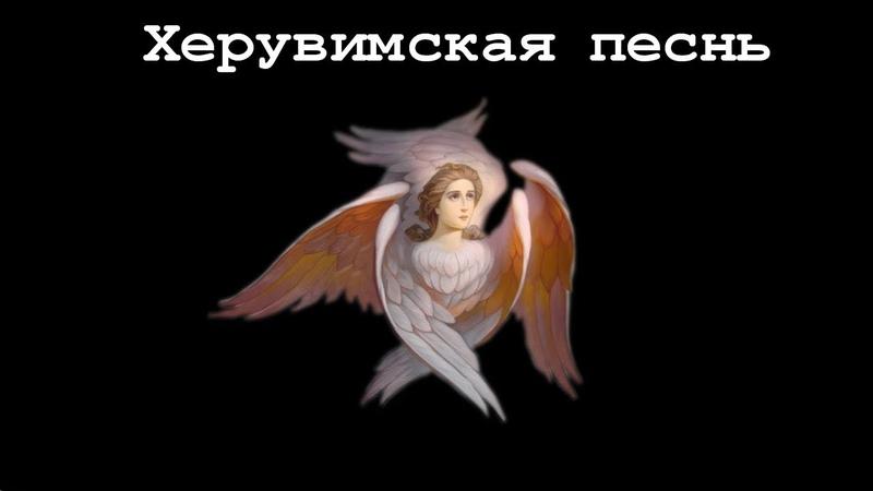 Херувимская песнь! Молитва.