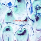 Обложка I Am Who I Am (Complete version originally performed by Lara Fabian) - Разные исполнители