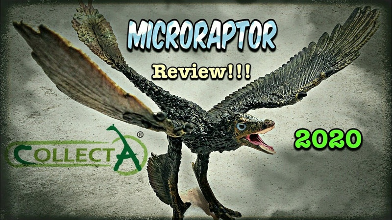 2020 Collecta Microraptor Review
