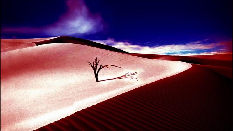 Dark-east-lo percussion-(stone08-where dead trees give no shelter)