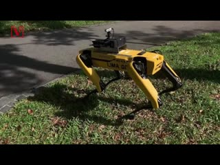 Robot Dog 'Spot' Unleashed to Help Maintain Social Distancing in Parks