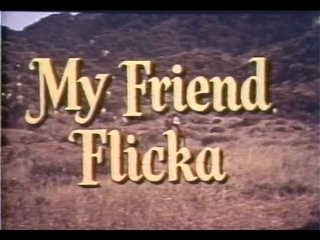 My Friend Flicka 20 of 39 - The Whip