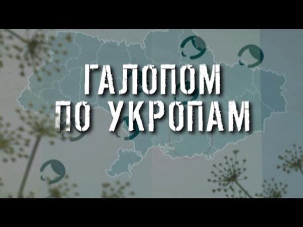ГТРК ЛНР Галопом по укропам 13 40 27 марта 2020 год