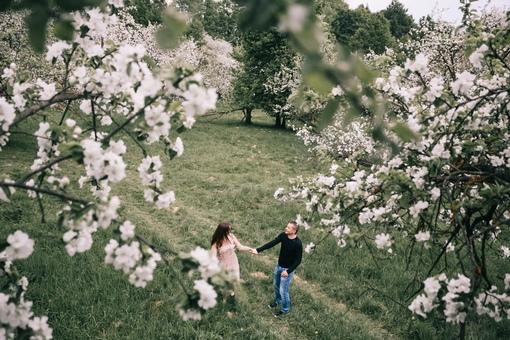 Яблоневый сад анапа для фотосессии