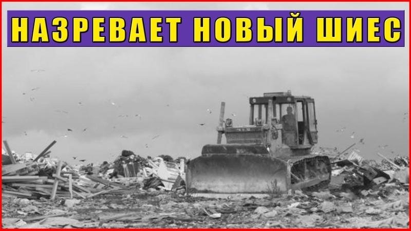 Белореченск новый ШИЕС Люди в отчаянии молят о помощи Мусорный полигон в Краснодарском крае