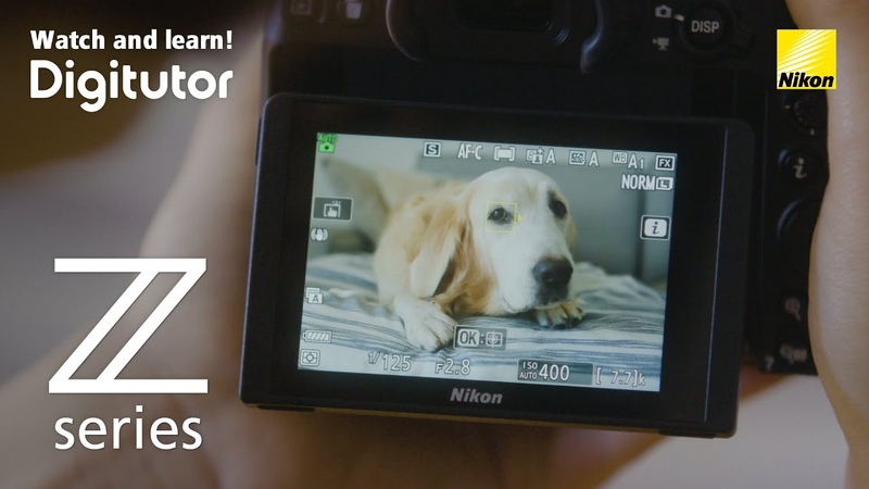 Z 7 Z 6 12. Animal-Detection AF: Focusing on the Faces/Eyes of Dogs and Cats | Digitutor