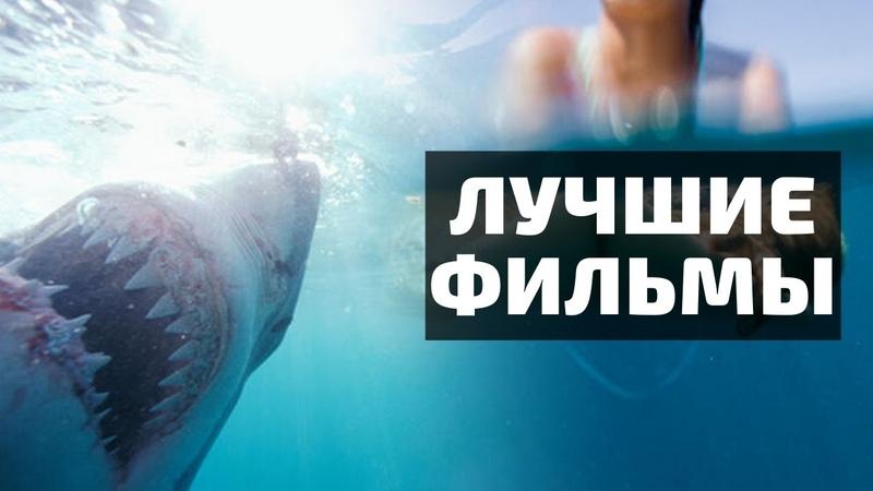 ТОП 5 ЛУЧШИХ ФИЛЬМОВ ПРО АКУЛ Сёрфер души Челюсти Кон Тики Водная жизнь Глубокое синее море