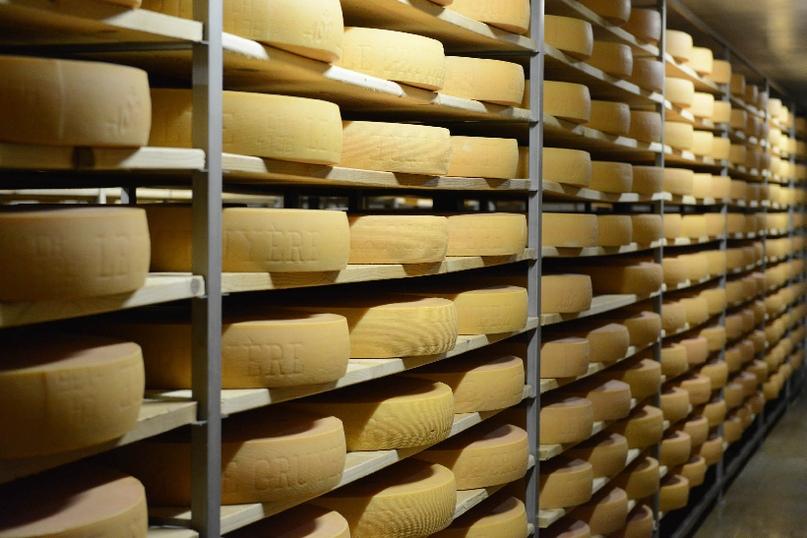 Агрохолдинг кинокомпании «Союз Маринс Групп» обеспечит россиян качественной сырной продукцией