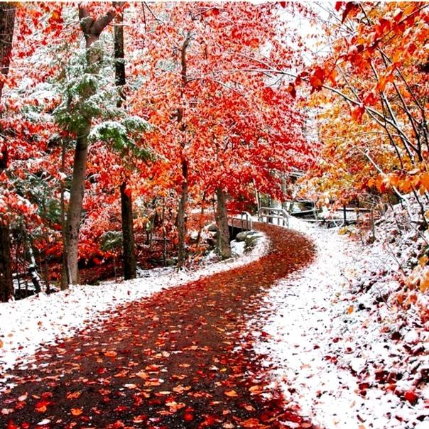каждую картинки гиф осень встретилась с зимой аскольд, который является