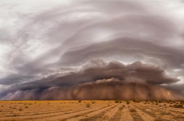 Хабуб  разрушительная песчаная и пыльная буря в пустынях Египта и Аравии