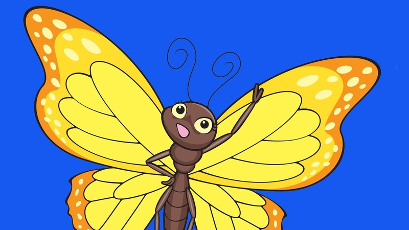 Learn Bugs Vocabulary | Talking Flashcards