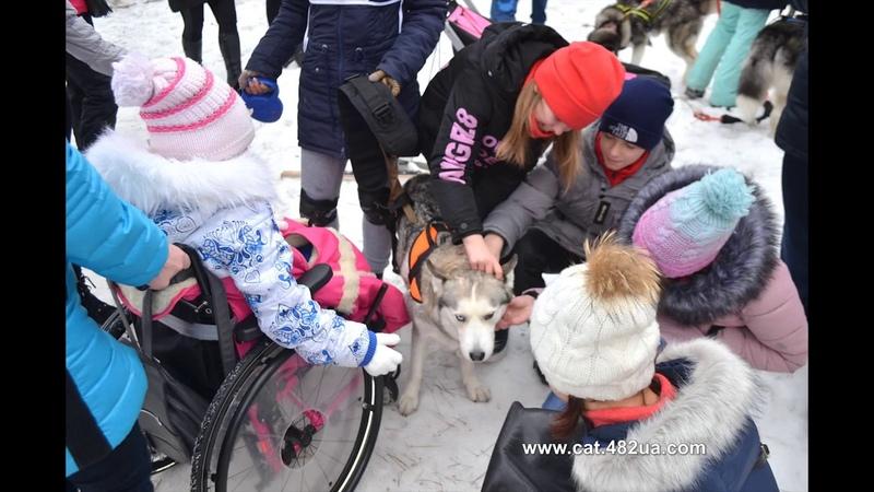 слайд шоу Winterdogfest Winter dog fest 2019 Песочин 10022019 собаки зимнии забавы