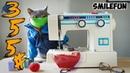 КОШКИ 2020 ПРИКОЛЫ С КОТАМИ 2020 Смешные Кошки и Коты Funny Cats