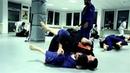 Dimitrius Souza BJJ Seminar Alliance Jiu-Jitsu Frankfurt