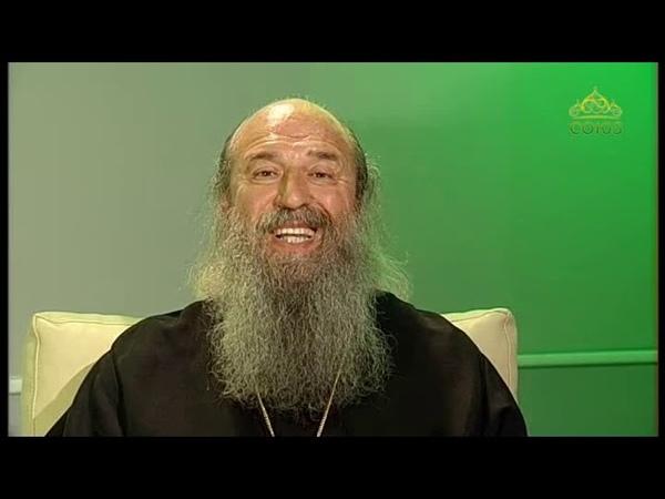 Беседы с батюшкой От 23 июня 2019 Архимандрит Мелхиседек Артюхин Духовная радость