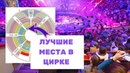 Вот это русский цирк Где лучшие места в Большом Московском цирке