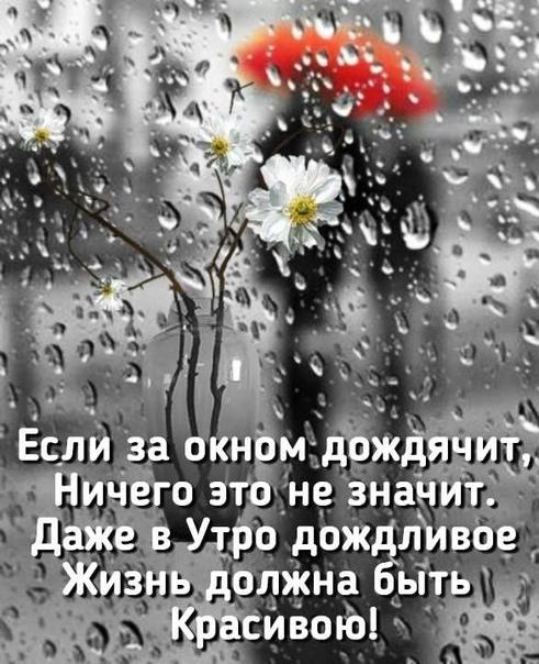 этом если поздравления в дождливую погоду его помощью