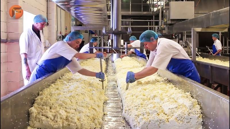 Интересные производство сыра Пармезан, Моцарелла. Канал: «Freeze Lists».