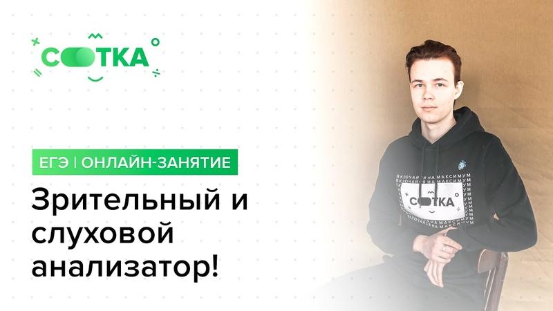 Зрительный и слуховой анализатор ОГЭ БИОЛОГИЯ 2020 Онлайн школа СОТКА