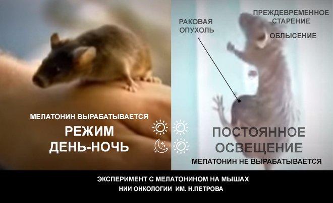 Это не о медицине. Это о красоте. Наш главный косметолог - Мелатонин., изображение №12
