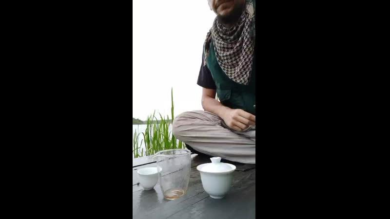 Как заваривать шу пуэр на природе