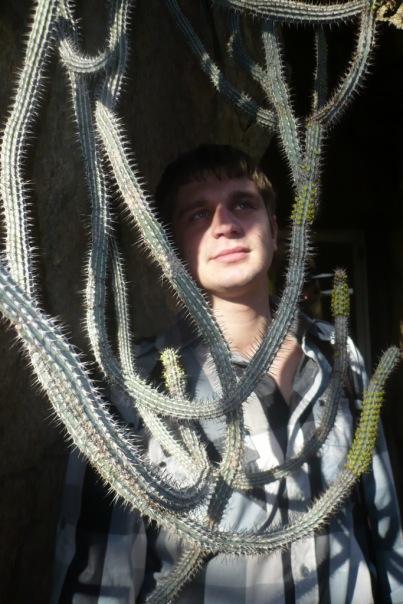 Дмитрий Шаврин, 33 года, Москва, Россия