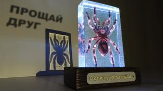 Эпоксидная смола. Паук в эпоксидке   Epoxy resin. Spider in epoxy.