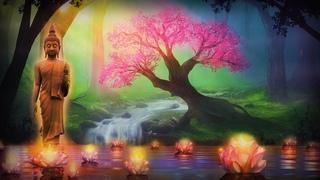 528 Hz | Raise Positive Energy Vibration | Love Frequency |  Self Healing Awakening Meditation Music