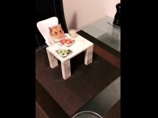 Званый ужин