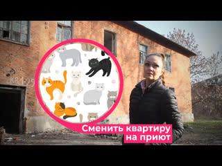 Художница из Курска хочет продать свою квартиру, чтобы открыть приют