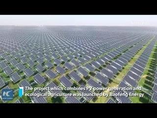 Необычная солнечная электростанция в Нинся