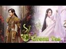 GREEN TEA Удушающая сладость, заиндевелый пепел 10