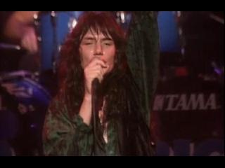 Mr. Big - Big Love  (Live At The NHK Hall, Tokyo, Japan) (1991)
