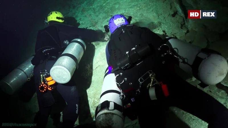 Подводный мир 04 серия Познавательный природа путешествие дайвинг