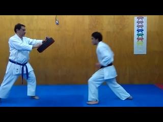 Mae tobi geri_jump front kick tutorial