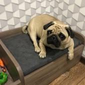 Кровать для собаки (Кошки) Фарго