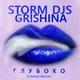 РУССКИЕ ХИТЫ 2019 - Storm DJs ft. Grishina - Затуши