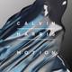 Calvin Harris, Alesso feat. Hurts - Under Control