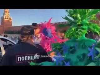 Полицейские задержали двух преступников, которые веселили людей в костюме растений на Красной Площади