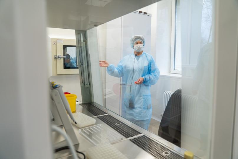 В Ухте открыли лабораторию для исследований на COVID-19, изображение №6